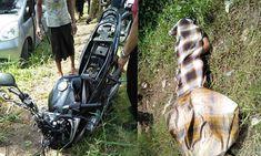 Adu Banteng Yamaha Vixion vs Honda Jazz, Tewaskan Dua Pelajar di Turen https://malangtoday.net/wp-content/uploads/2018/02/Untitled-1-8.jpg MALANGTODAY.NET – Dua orang remaja meninggal dunia akibat terlibat kecelakaan lalu lintas di Jalan Raya Gedog Wetan, Kecamatan Turen, Kabupaten Malang, Senin (12/2). Adapun kronologis kecelakaan lalu lintas itu bermula saat Nurul Nurhanudin Aziz (26) warga Desa Druju, Kecamatan... https://malangtoday.net/malang-raya/kabupaten-malang/
