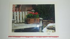 785 D227 Garden Flower Bench Greeting Card with a Matching Envelope Lovely Blank All Occasion Note Card by BuyNow1Photo on Etsy