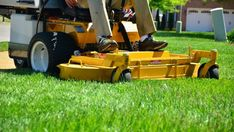 Jim's lawn mowing services in Perth cost is reasonable. We are professional lawn mowers in Perth. Get a FREE Quote for lawn mowing at 131 Visit. Best Zero Turn Mower, Zero Turn Mowers, Mowing Services, Gardening Services, Gardening Blogs, No Mow Grass, Lawn Mower Service, Lawn Care Companies, Lawn Care Business