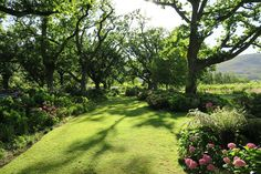 Awesome garden wedding venue in Paarl near Cape Town in South Africa is Tea Under the Trees. Best wedding destinations in the world. Alice in Wonderland setting. Perfect also for tea.