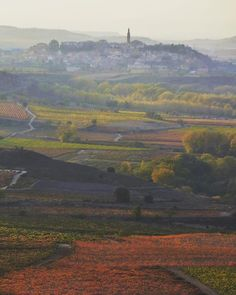 Increíble espectáculo otoñal en La Rioja #davalillo #larioja #lariojaalta #estaes_larioja #otoño #otoño2017 #autumn #thediscoverer #thetravelwomen #wearetravelgirls #bestdiscovery #beautifulexplorers #somosinstagramers #bestvacations #exploringtheglobe #sidewalkerdaily #fotocatchers #photographylife #otoño #lariojaturismo