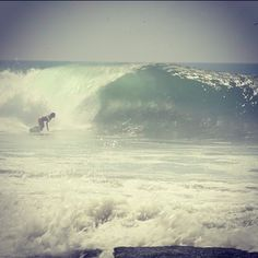 Surfing love all the way
