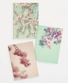 Flowers Set as Gift Card Set by Monika Strigel | JUNIQE