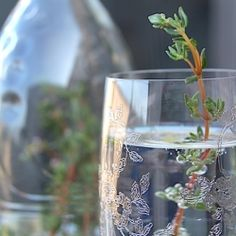Refreshing thyme-infused sparkling mineral water brunch cocktail!