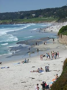 Carmel Beach...The funnest pet friendly beach there is!!!