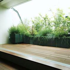 手軽に楽しめるバルコニーのハーブガーデンの実績写真 Interior Garden, Decks And Porches, White Gardens, Terrace Garden, Apartment Design, Terrazzo, Backyard Landscaping, Beautiful Gardens, Rooftop