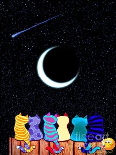 Draw Cats Wish Upon A Star Drawing by Nick Gustafson - Wish Upon A Star Fine Art Prints and Posters for Sale - I Love Cats, Crazy Cats, Cute Cats, Adorable Kittens, Cat Quilt, Cat Colors, Colours, Here Kitty Kitty, Sleepy Kitty