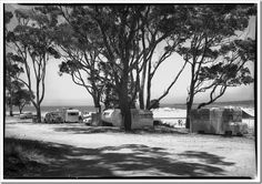 [Camping ground with caravans and tents] [Frank Hurley] Camping Fire Pit, Go Camping, Camping Cabins, Camping In Tennessee, Retro Caravan, Get Outdoors, Queensland Australia, Sunshine Coast, Campsite