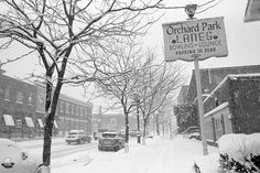 Orchard Park Lanes Sign in Winter - Orchard Park, NY