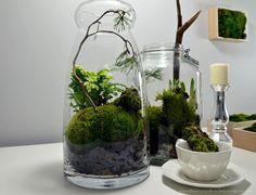 PL Za oknem nadal zima, a Ty już nie możesz doczekać się wiosny? Jest na to idealne rozwiązanie!:) Bardzo modne w ostatnim czasie małe ogrody zamknięte w szklanej przestrzeni. Jest to idealne roz…