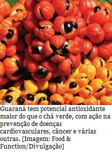 Guaraná tem mais antioxidantes do que chá verde  O chá verde é bem conhecido por seus efeitos saudáveis, amplamente consumido, entre outras coisas, devido aos benefícios de uma classe de compostos químicos presente em sua formulação, as catequinas, com ação antioxidante e propriedades anti-inflamatórias, entre outras.  Agora, contudo, o chá verde tem um concorrente à altura: o guaraná