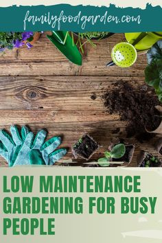 In these busy times, when you want to maintain a garden, Family Food & Garden knows that you want to work smart not hard. If you thought it would take a lot of work and time to maintain a garden, we want to show you otherwise. We include some valuable tips and strategies that will help you find the time to take care of a garden that will fit into your busy schedule. Put them in practice by following our guide here... #lowmaintenancegardening #gardeningforbusypeople #easygardening Container Gardening, Gardening Tips, Healthy Fruits And Vegetables, Easy Garden, Garden Ideas, Low Maintenance Garden, Small Trees, Growing Plants, Garden Planning