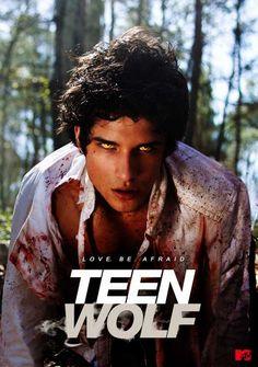 Teen Wolf 11x17 TV Poster (2011)