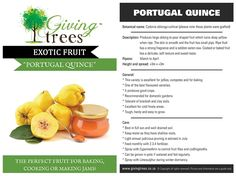 Exotic Fruit Tree Production