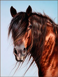 """Shannon Lawlor, western artist.  Love this one.  """"Casey""""."""