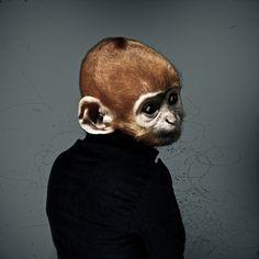 Alex Castro Animal Portraits by taloola