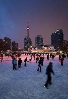 Ice skating in Toronto, Ontario, Canada Toronto Canada, Toronto Winter, Toronto City, Downtown Toronto, Toronto Snow, Tourist Places, Places To Travel, Places To Visit, Santa Lucia