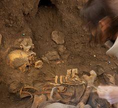 Cultura - Libro del Museo de la Evolucion Humana_Libro-Atapuerca-Museo-Evolucion-Humana_1.jpg