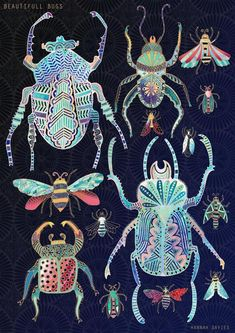 Art And Illustration, Nature Illustrations, Posca Art, Bug Art, Beautiful Bugs, Beautiful Pictures, Ouvrages D'art, Insect Art, Bugs And Insects