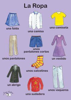 La ropa (voc latino)