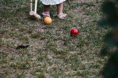 Barnet, Pumpkin, Outdoor, Outdoors, Pumpkins, Outdoor Games, Squash, The Great Outdoors, Barnet F.c.