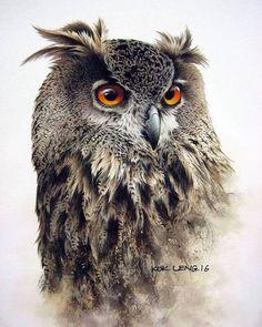 Owl Watercolor, Watercolor Animals, Bird Drawings, Cool Art Drawings, Beautiful Owl, Animals Beautiful, Owl Art, Bird Art, Realistic Owl Tattoo