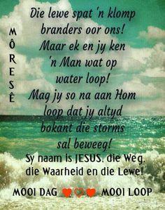 Evening Greetings, Good Morning Greetings, Good Morning Wishes, Morning Messages, Good Morning Quotes, Good Morning Rainy Day, Bible Quotes, Bible Verses, Qoutes