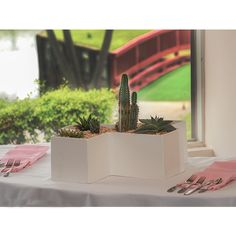 The unique design of the Yorktown Tabletop Planter showcases the beauty of plants and flowers in a modern way!