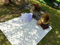 Photoboot vintage. vintage instruments, wedding relax, music, garden