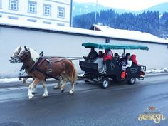 Kutschenfahrt mit unseren Gästen in Fügen. www.hotel-schiestl.com