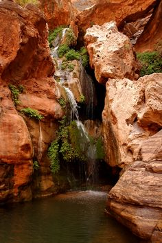 Elves Chasm   Grand Canyon Rafting   O.A.R.S.