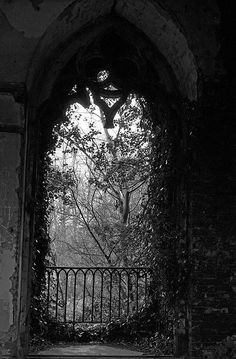 Even the Winter death of a garden has its own, silent beauty. Gothic Art, Victorian Gothic, Gothic House, Dark Castle, Gothic Aesthetic, Southern Gothic, Gothic Architecture, Ancient Architecture, Dark Places