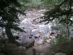 8월 점심 소풍 @ Gateway Natural Area * 물가. ** 산책로 있음