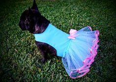Baby Blue and Pink Tutu Pet Dog Dress