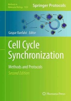 Cell Cycle Synchronization: Methods and Protocols