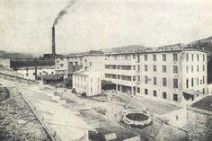 Fabrik Gebrüder Thonet Koritschan