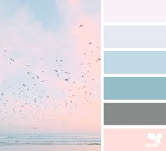 Heavenly Hues color palette inspiration image via: Pastel Colour Palette, Colour Pallette, Colour Schemes, Theme Color, Design Seeds, Light Blue Color, Home And Deco, Colour Board, Color Swatches