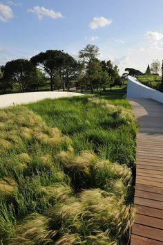 landscaping with ornamental grasses Contemporary Garden Design, Garden Landscape Design, Urban Landscape, Landscaping With Rocks, Modern Landscaping, Landscaping Plants, Landscaping Ideas, Design Jardin, Garden Park
