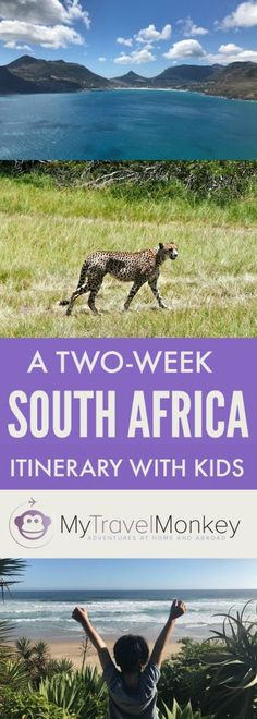 A Two-Week South Africa Trip Itinerary With Kids
