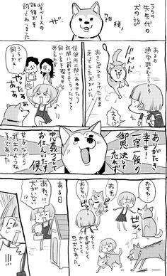 松本ひで吉*犬と猫とねこ色単行本6/13発売 (@hidekiccan) さんの漫画   88作目   ツイコミ(仮)