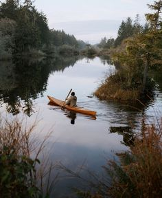 Canoe kayak river lake adventure explore wild organic nature with friends road trip Le Havre, Canoe And Kayak, Kayaking, Canoeing, Adventure Is Out There, Adventure Awaits, The Great Outdoors, Trekking, Places To Go