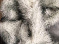 White Fox Faux Long Pile Fur Fabric Trim For Hood Size 7*90cm (3x35 inches) #Belfa