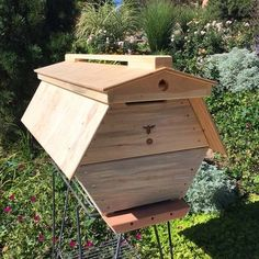 The Cathedral Hive hexagonal Top Bar Hive Beekeeping Books, Backyard Beekeeping, Beekeeping Supplies, Top Bar Hive, Bee Hive Plans, Raising Bees, Bee Boxes, Bees Knees, Construction
