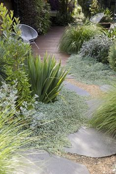 Australian Designer Peter Fudge | Backyard Gardening - Gardening Living