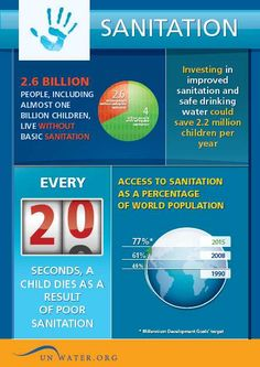Sanitation Facts: Today 2.5 billion people, including nearly 1 billion children, live without even basic sanitation. Every 20 seconds, a child dies as a result of poor sanitation. That's 1.5 million preventable deaths each year. http://www.unwater.org/downloads/WWD2012_sanitation.pdf