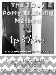 3 Day Potty Training Method: Tips & Advice - Nurse Loves Farmer this absolutely works! Have done it and am doing it with both kids!