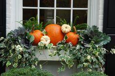 Dekoration Blumenkasten Superb Window Box Planters Ideas That Will Inspire You 13 Fall Window Boxes, Window Box Flowers, Window Ideas, Fall Flower Boxes, Fall Flowers, Fall Planters, Window Planter Boxes, Autumn Planter Ideas, Fall Containers