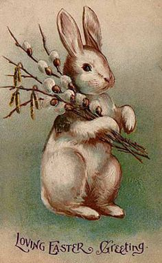 Shop Vintage Easter Bunny Rabbit Holiday Postcard created by kinhinputainwelte. Personalize it with photos & text or purchase as is! Vintage Greeting Cards, Vintage Postcards, Vintage Images, Easter Bunny, Easter Eggs, Hoppy Easter, Happy Easter Wishes, Image Beautiful, Diy Ostern