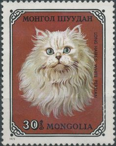 Mongolia 1979 Cat Stamps - Long Haired White Persian