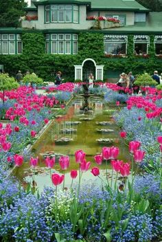 Garden with a Water fountain & flowers